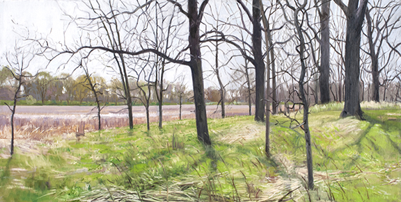 "May 6 Lincoln Marsh 12x24"" 2014 (sold)"