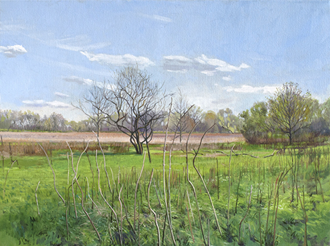 "May 9 Lincoln Marsh 18x24"" 2014"