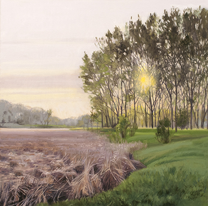 "May 19 Lincoln Marsh 20x20"" 2014 (sold)"