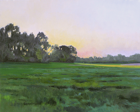 "June 3 Lincoln Marsh 16x20"" 2014 (sold)"