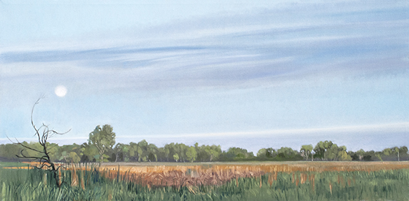 "June 14 Lincoln Marsh 12x24"" 2014 (sold)"