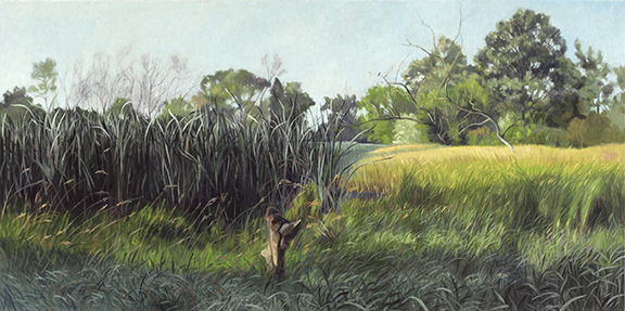 "July 23 Lincoln Marsh 18x36"" 2014 (sold)"