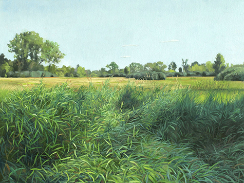 "July 29 Lincoln Marsh 18x24"" 2014"
