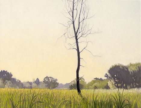 "August 15 Lincoln Marsh 11x14"" 2014 (sold)"