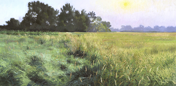"August 1 Lincoln Marsh 15x30"" (sold)"