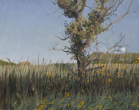 "September 6 Lincoln Marsh 16x20"" 2014"