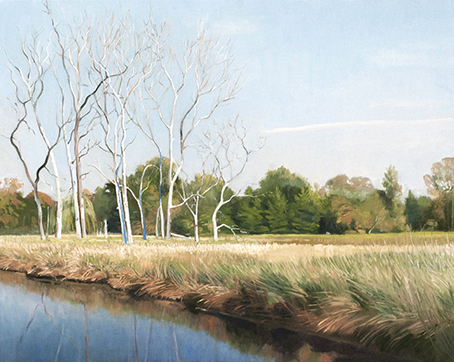 "September 26 Lincoln Marsh 16x20"" 2014"