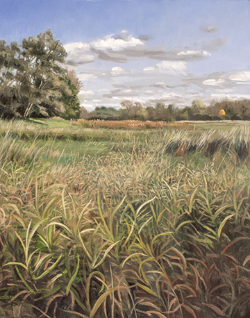 "October 5 Lincoln Marsh 20x16"" 2014"