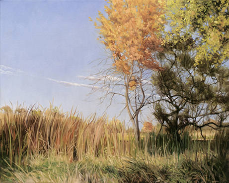 "October 11 Lincoln Marsh 16x20"" 2014 (sold)"