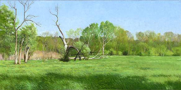 "Split Willow on Fox River Flood Plain  12x24"" 2017"