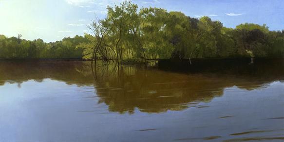 """Flooded Island, Fox River, July 27,  18x36"""" _ 2017"""