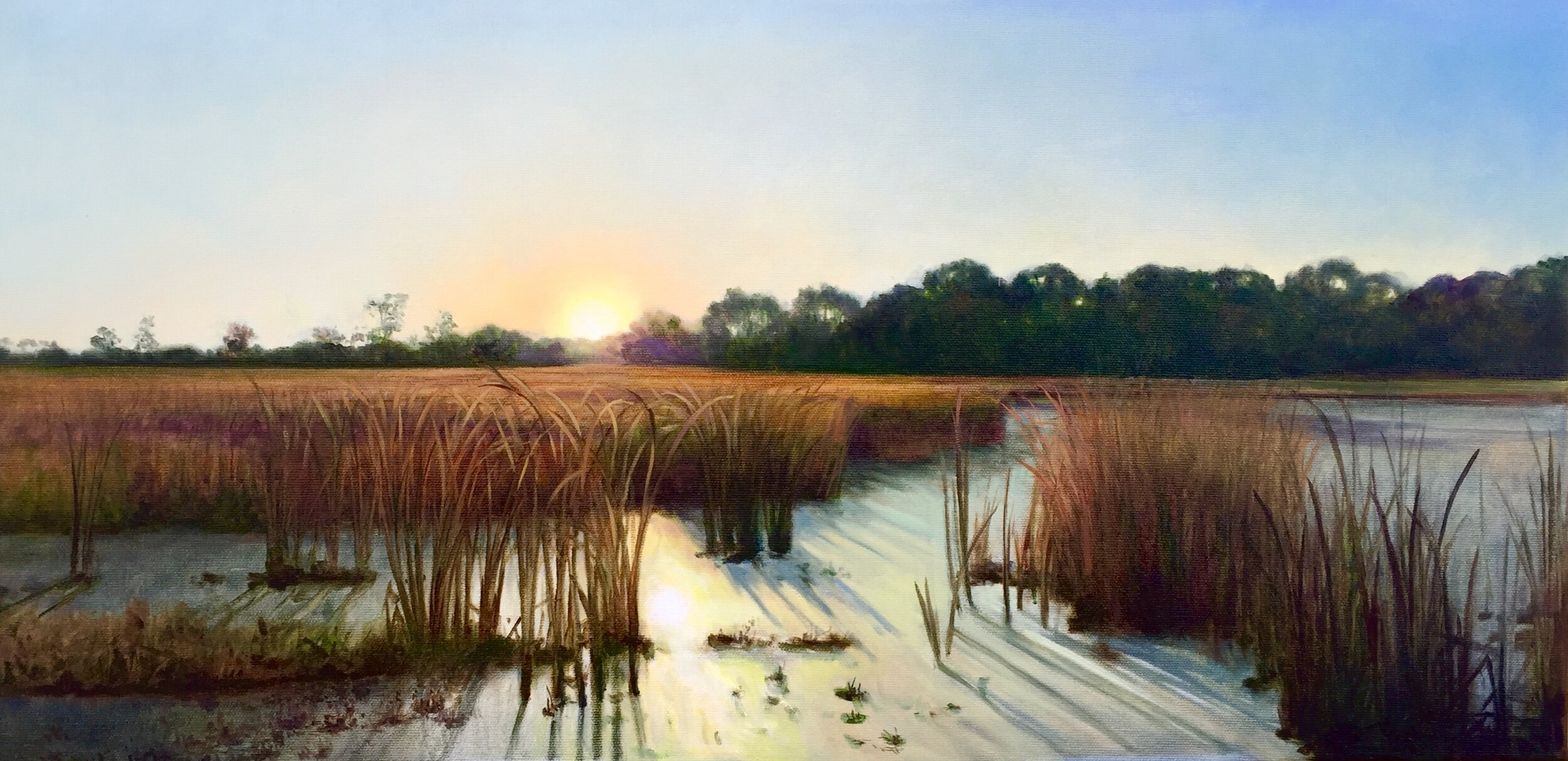 """Lincoln Marsh Sunrise,"" 12x24"" 2019"