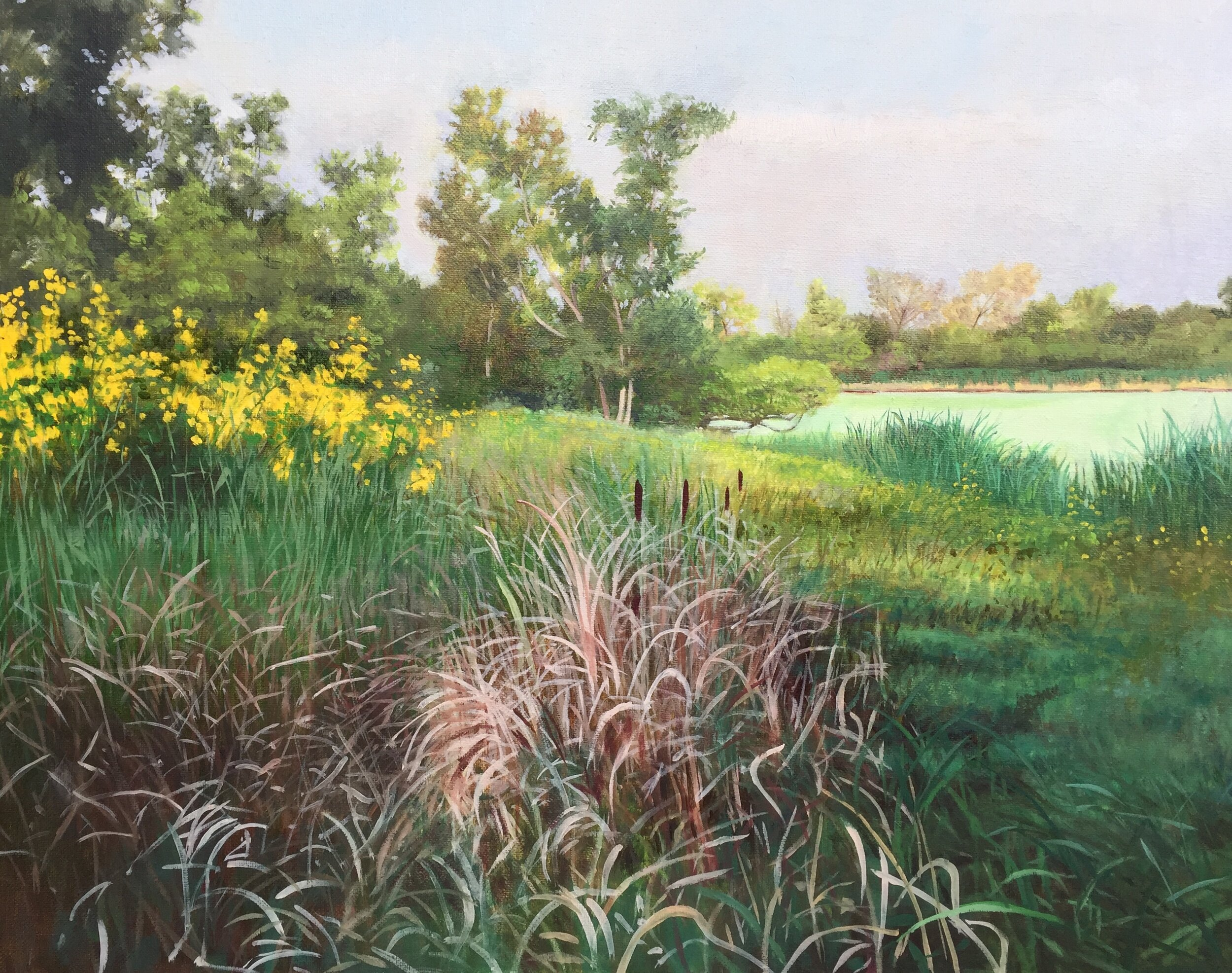 """September, Lincoln Marsh,"" 16x20"" 2019"