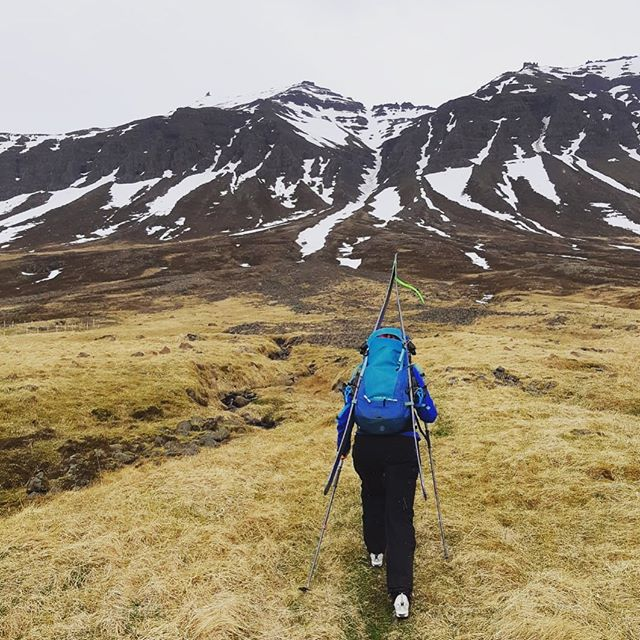 Determination. #couloirhunting #eastfjords #skiiceland #skiseasonisover #stenbergguides 📸 @philbethemountain