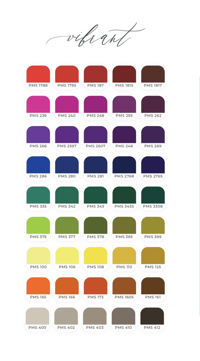 Final 3 Palettes Vibrant 2.png