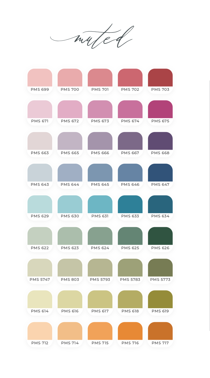 Final 3 Palettes Muted 2.png