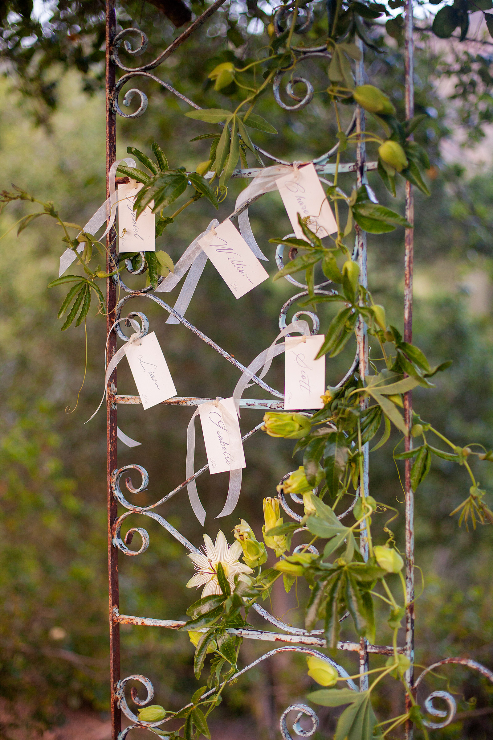 Calistoga-Ranch-Wedding-45jpg