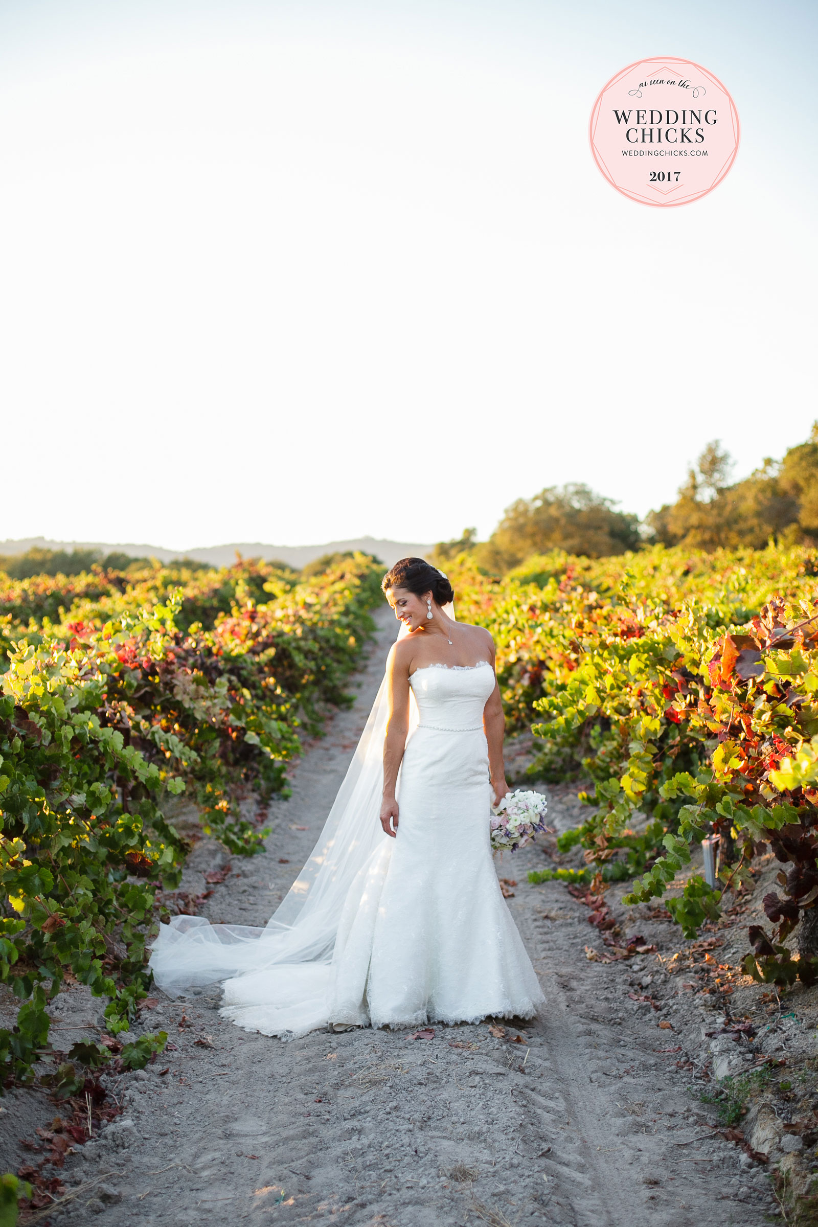 Sonoma-Wedding-Photographer1.jpg