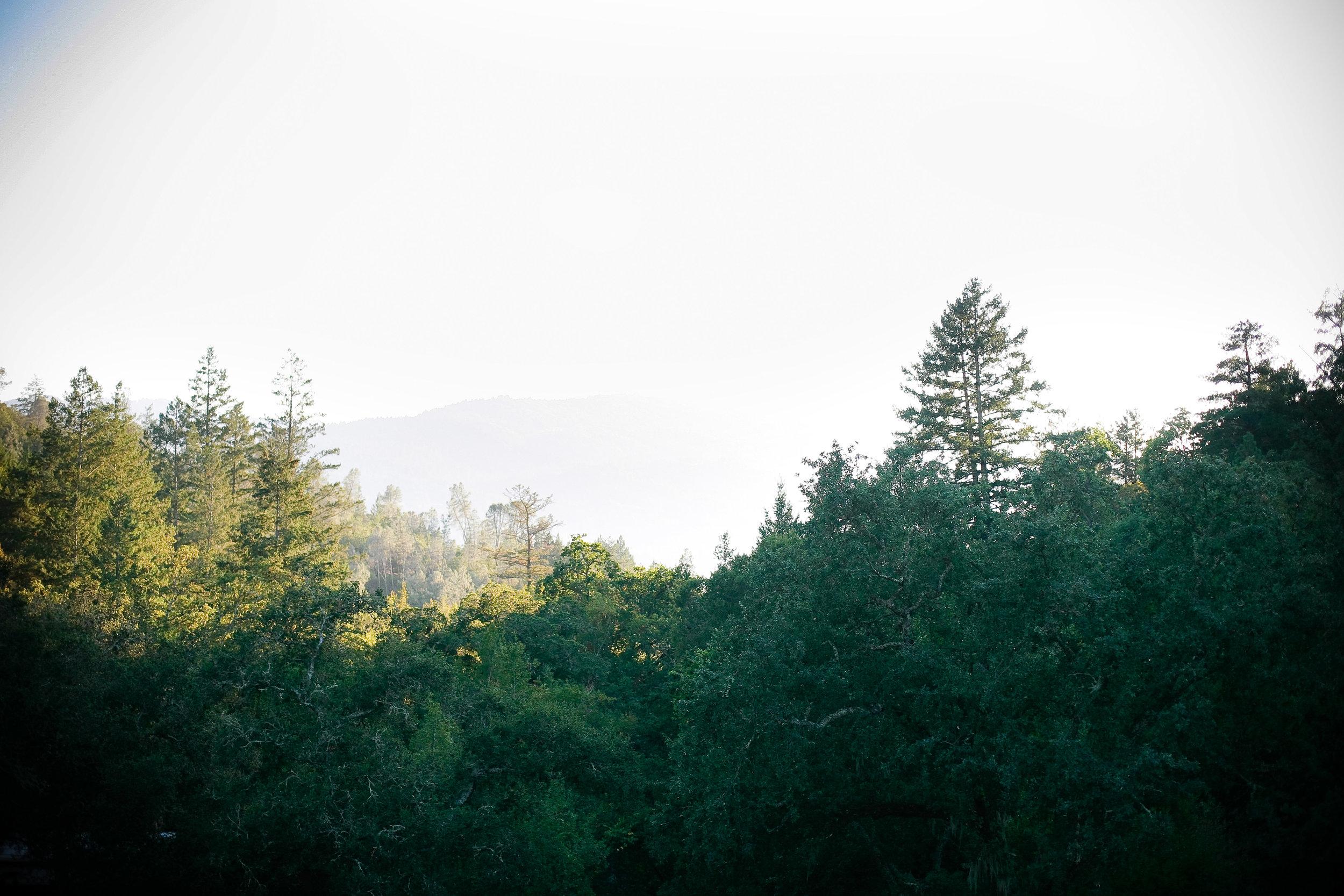 Best-Napa-Valley-Wedding-Venues-Calistoga-Ranch-(11).jpg