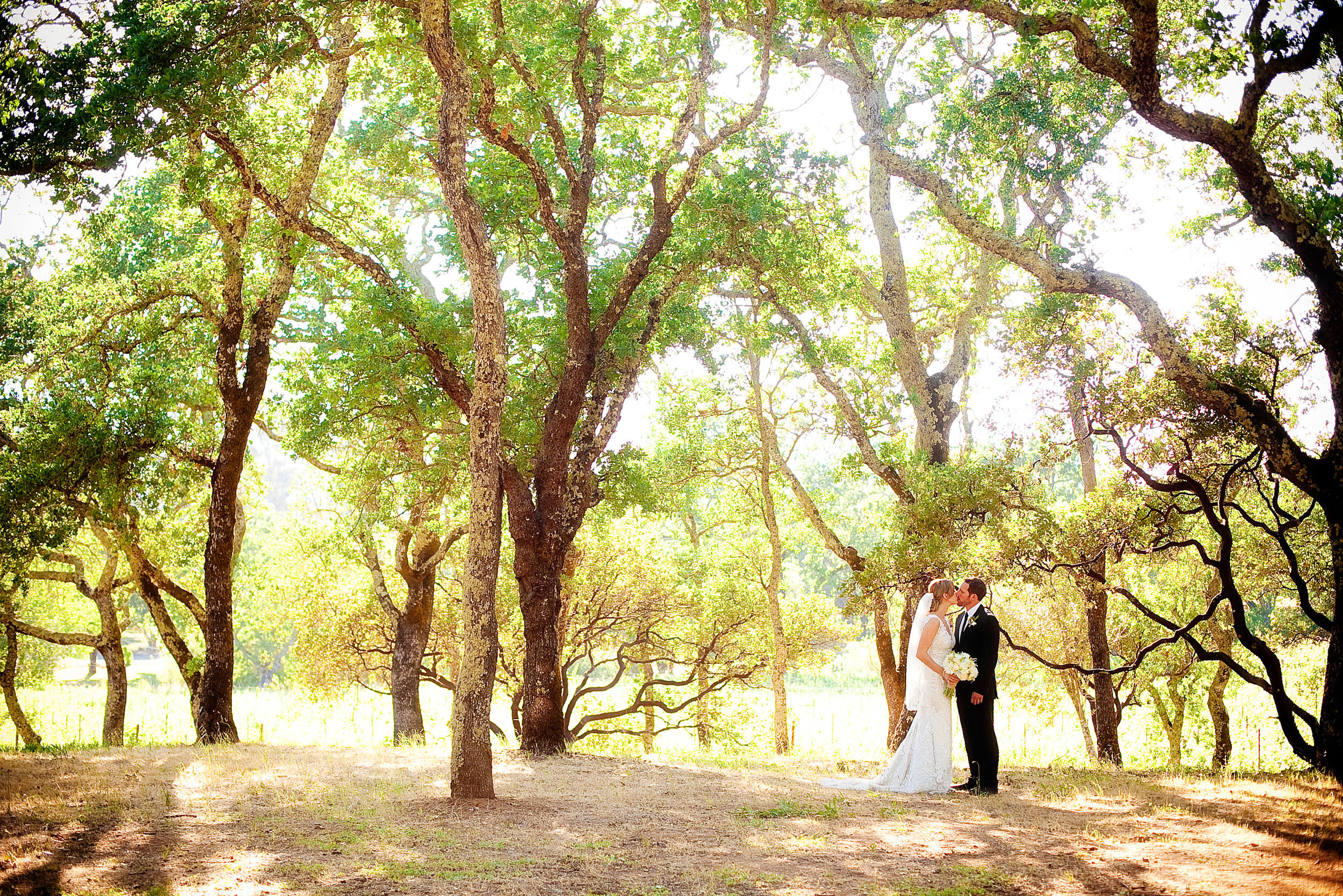Best-Napa-Valley-Wedding-Venues-BR-Cohn.jpg