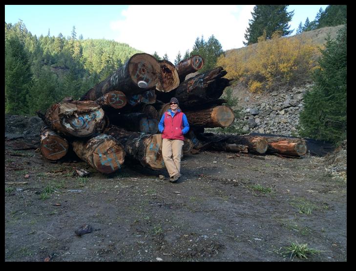 West Fork Cow Creek Restoration