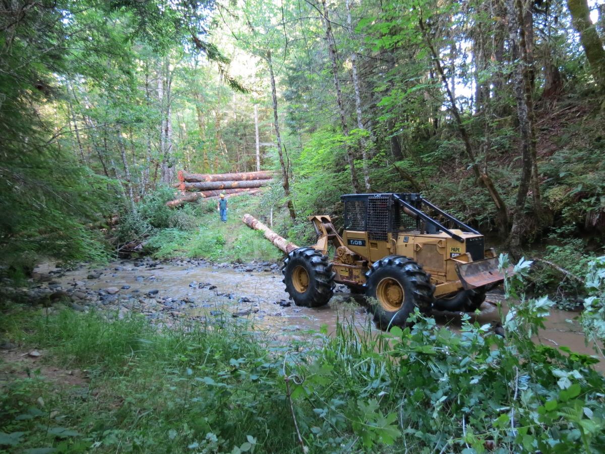South Myrtle Creek Restoration