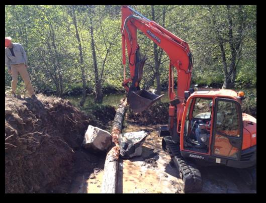 Elk Creek Restoration