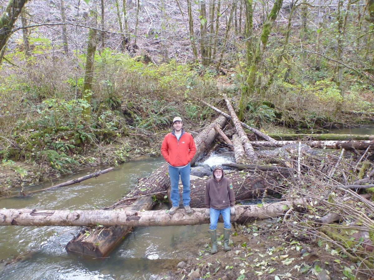 weatherly creek 4.jpg
