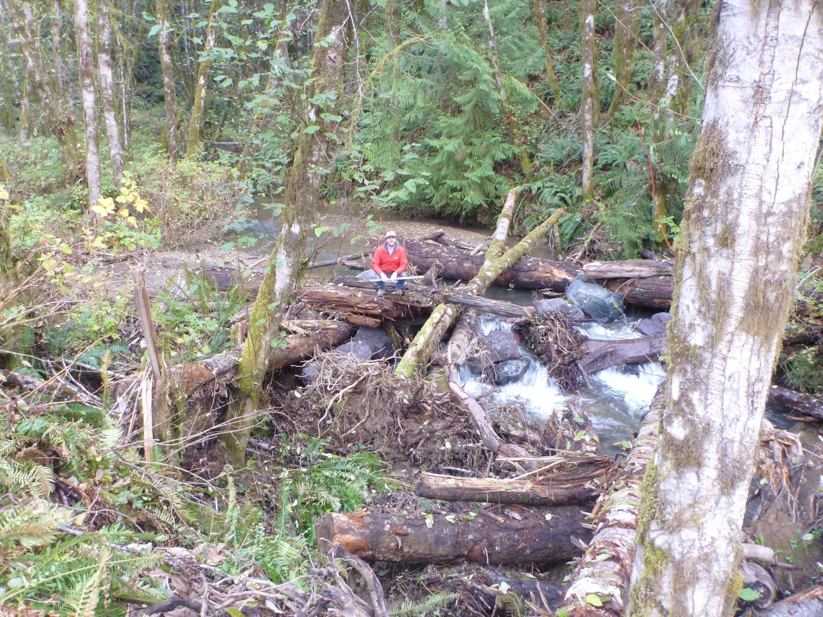 Weatherly Creek Restoration