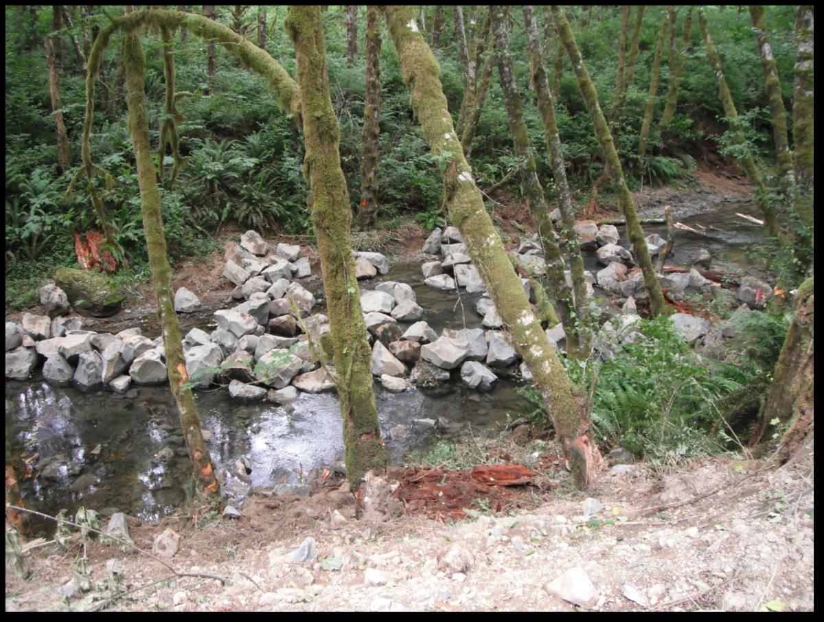 West Fork Smith River Restoration