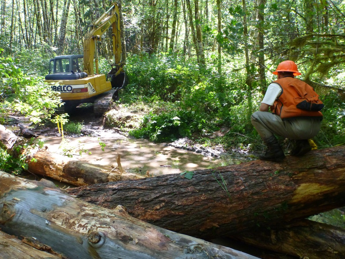 Upper Smith River Restoration