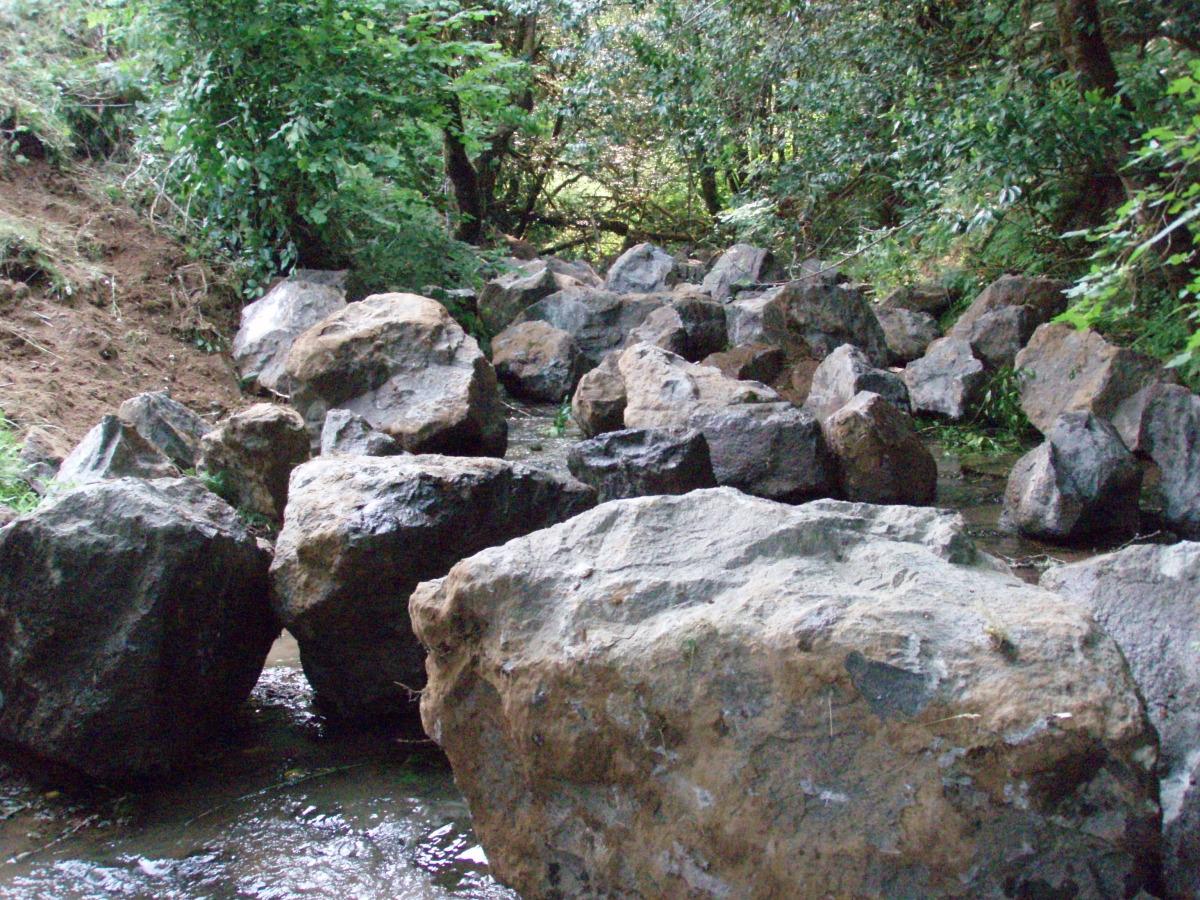 brads creek 2008.jpg