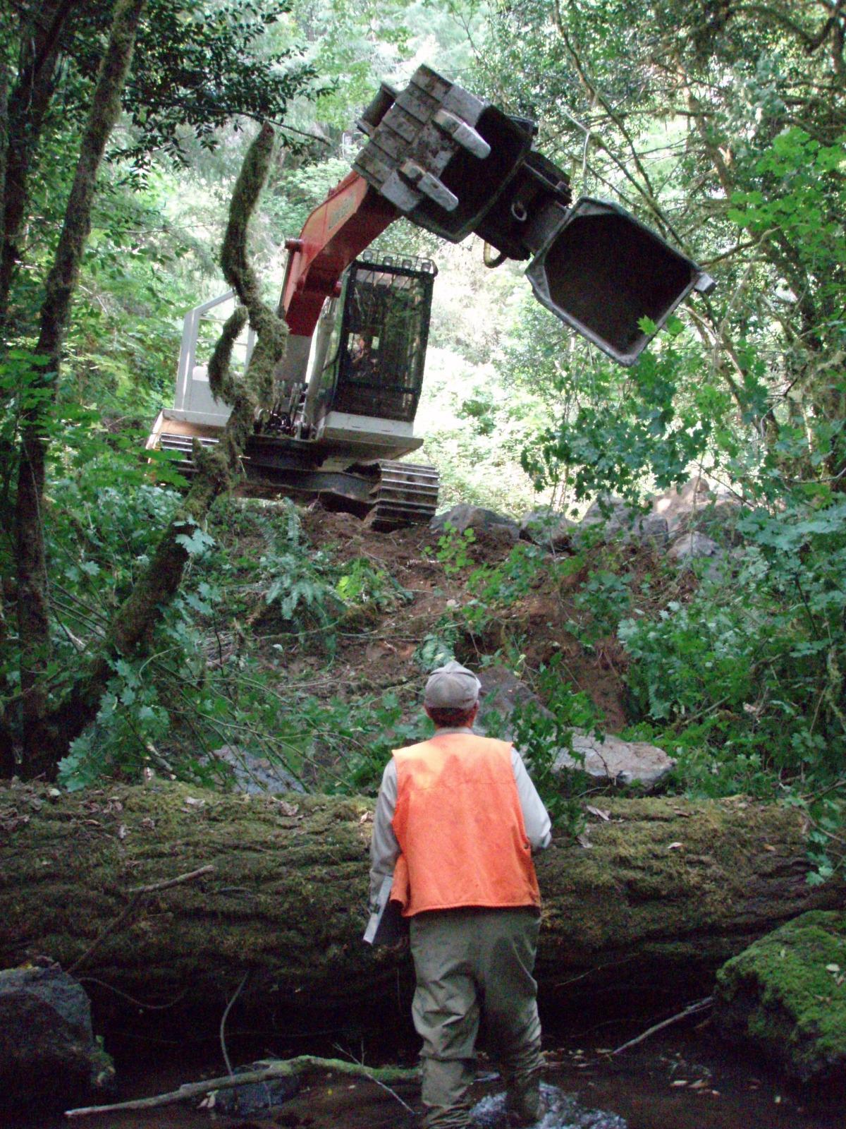 brads creek 2008 2.jpg