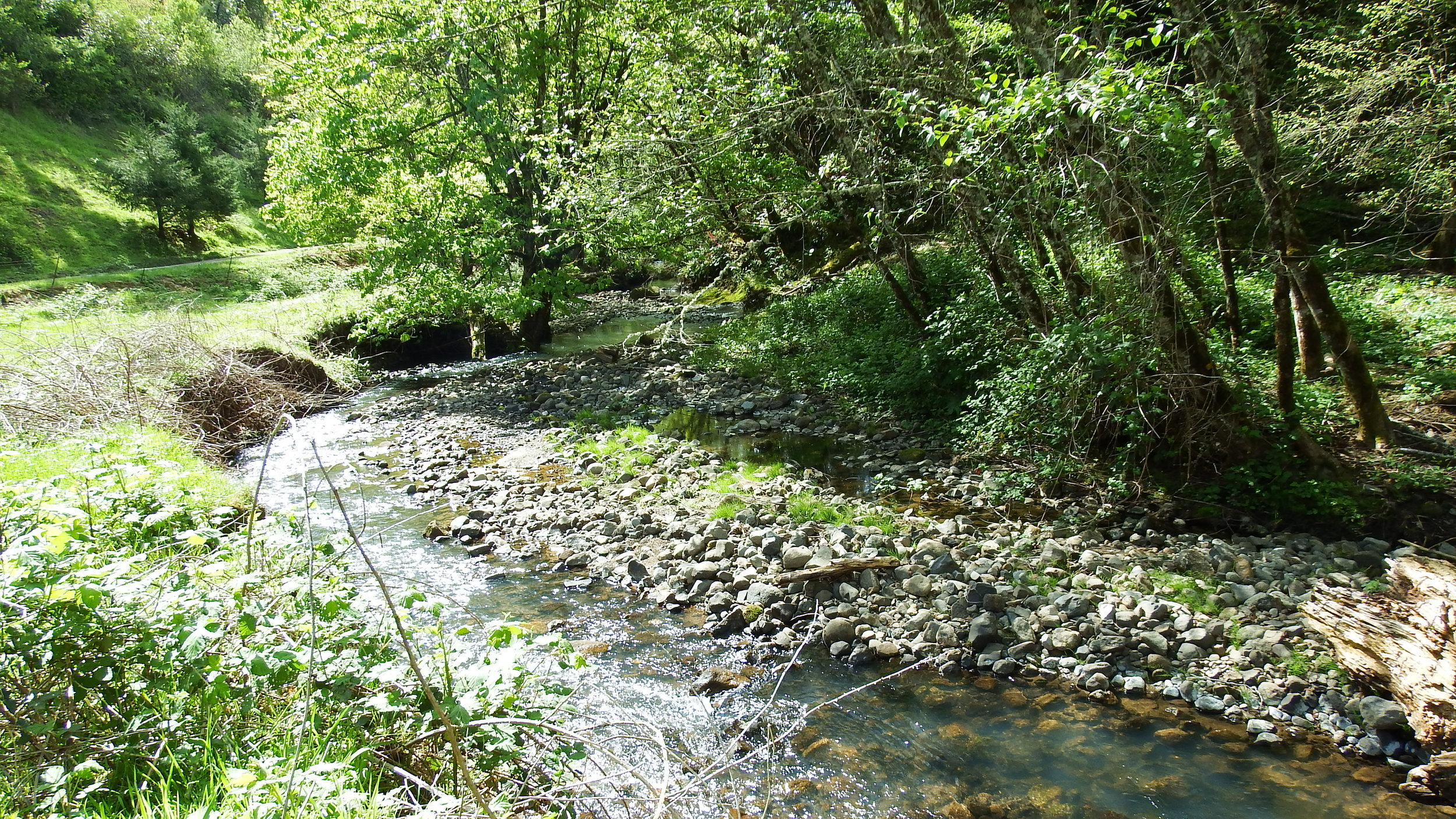 French Creek -