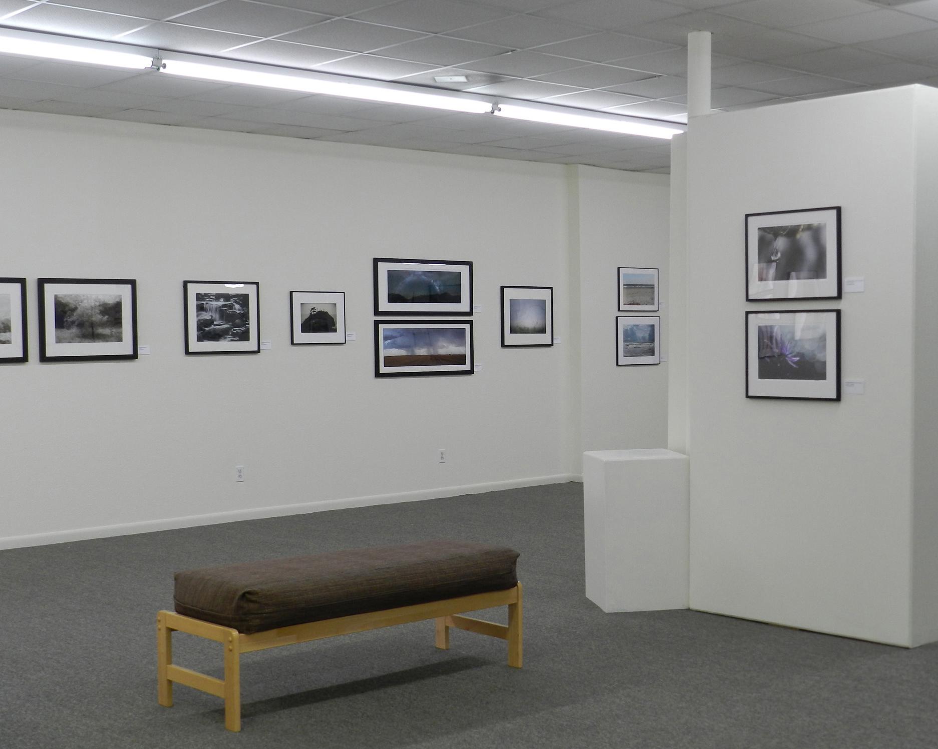 Art League of Baytown - 2016