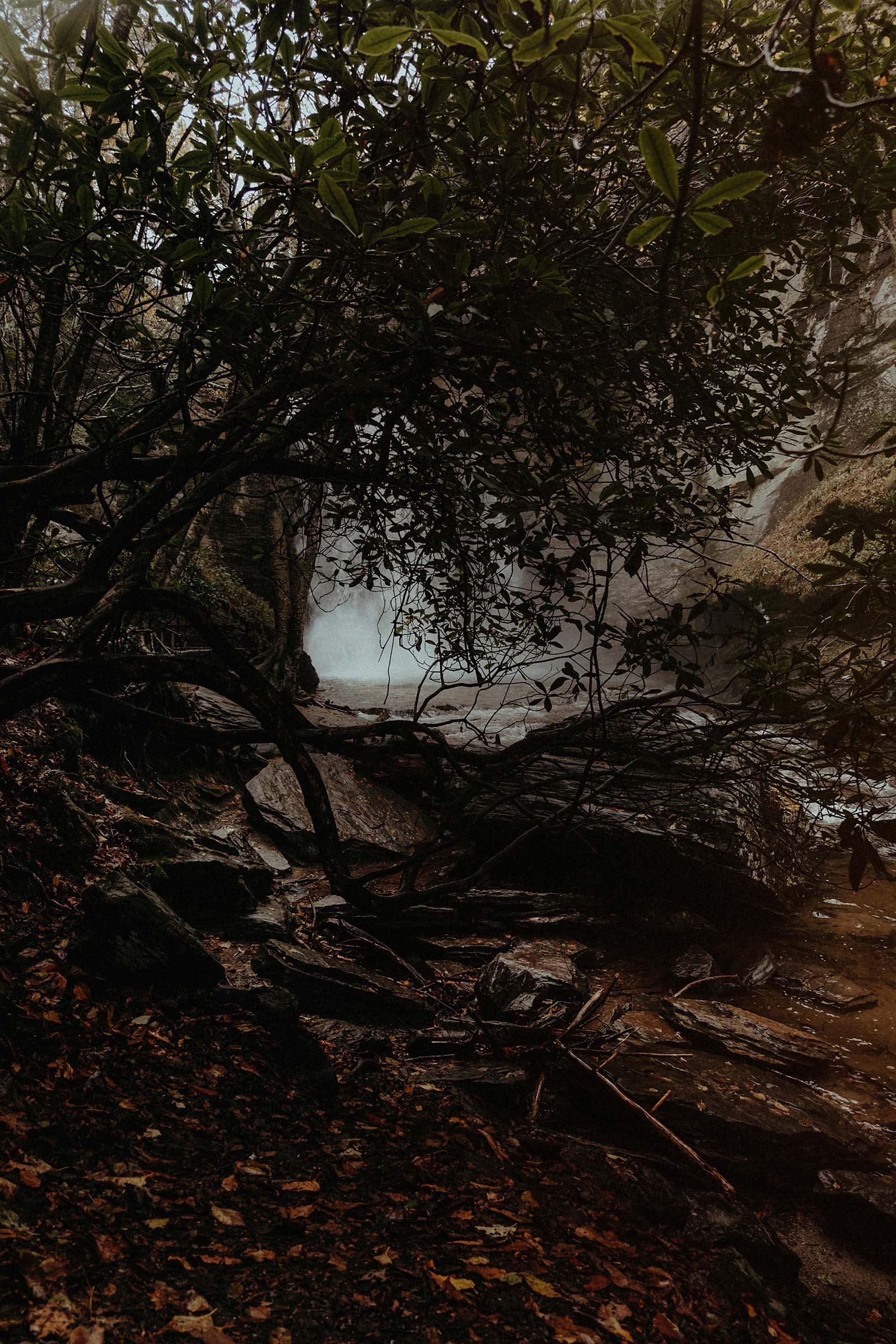 BlueRidge-fog.jpg