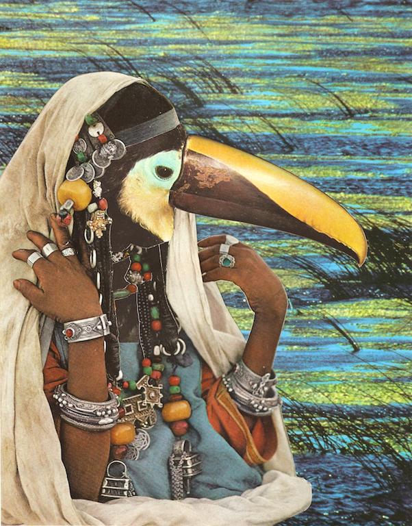 pelicano-copy.jpg