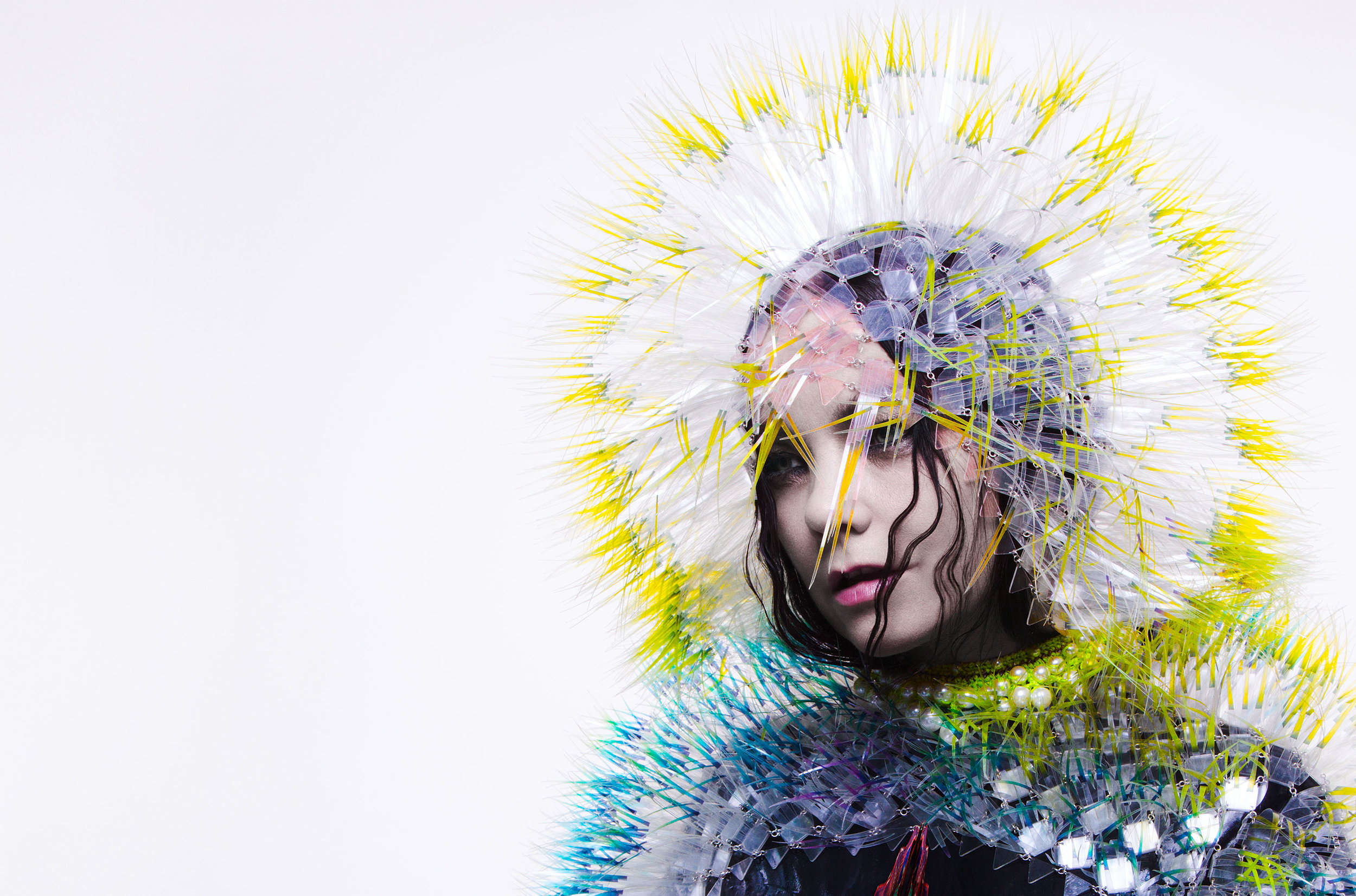 Björk  by  INEZ-AND-VINOODH .
