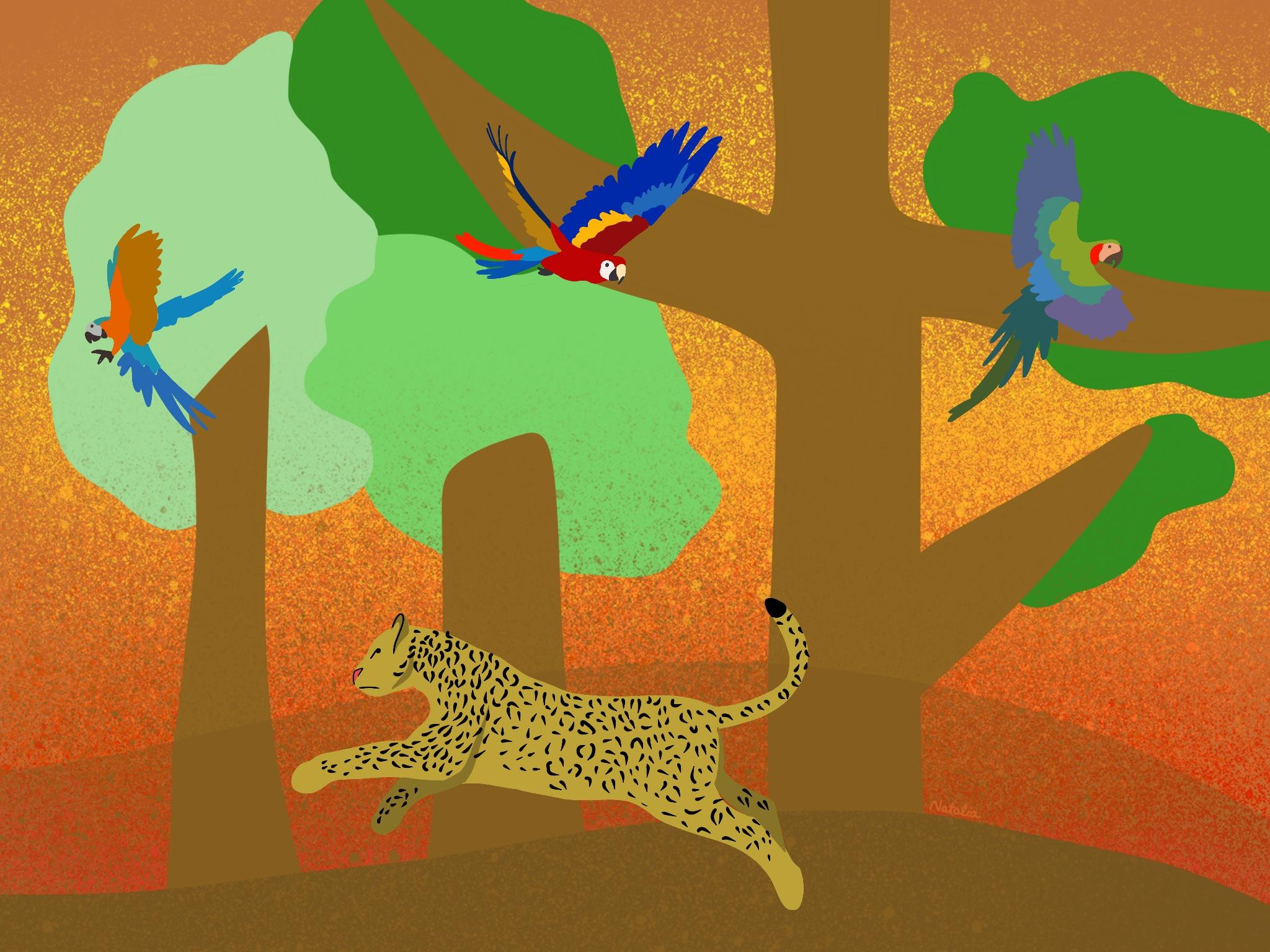 Ilustración por: Natalia Figueroa