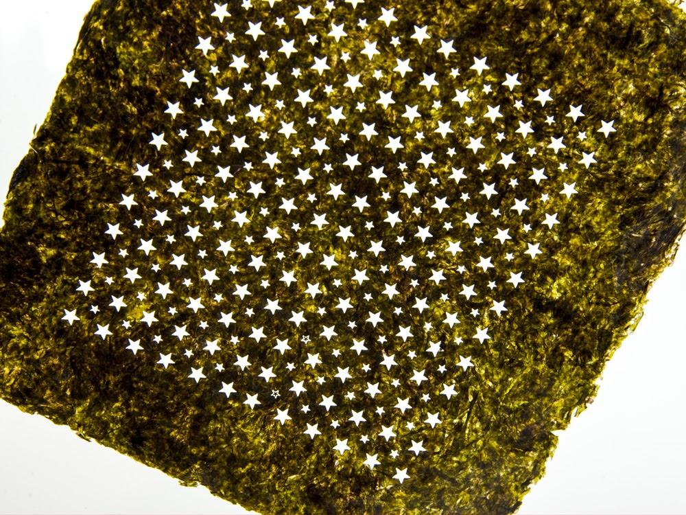 Laser Cut Seaweed