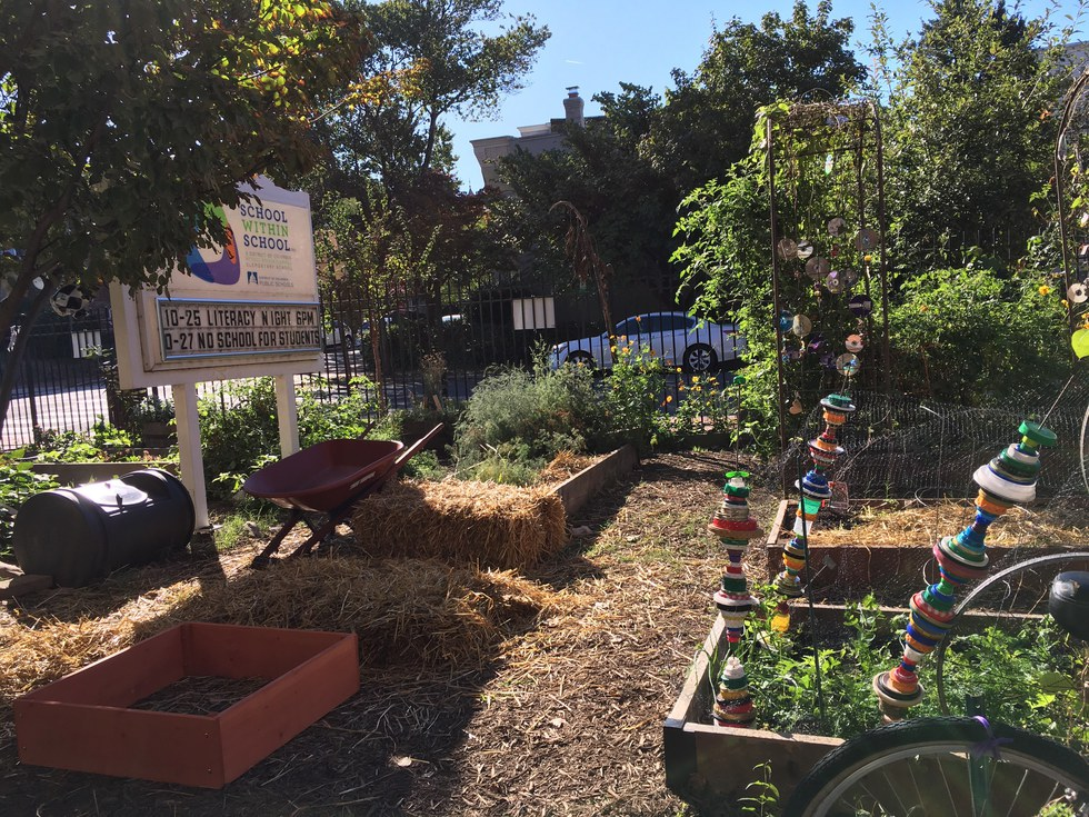 Every month is Farm to School Month at this School, EcoWatch