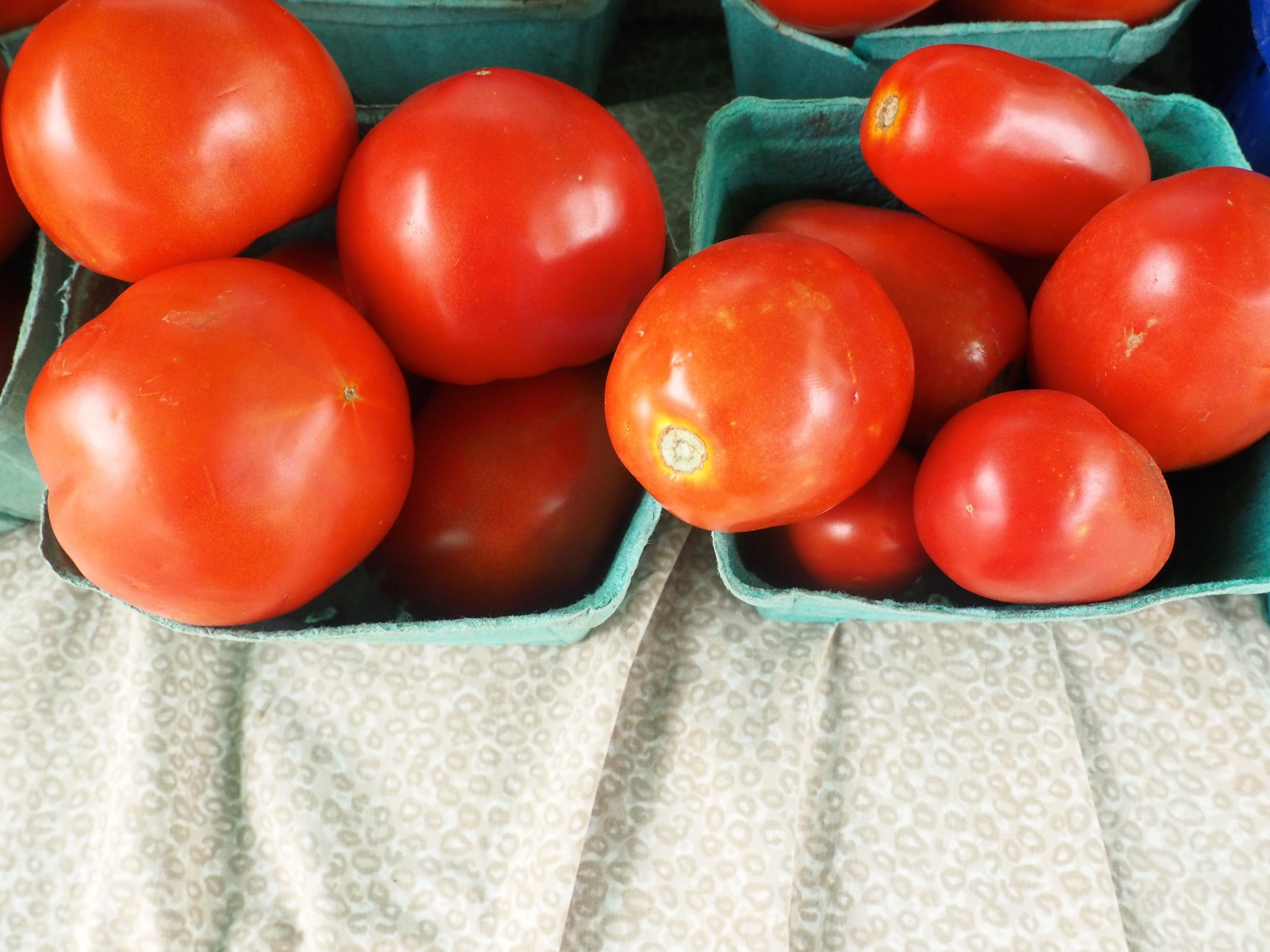 Tomatoes FRESHFARM Penn Quarter 2015 (2).jpg