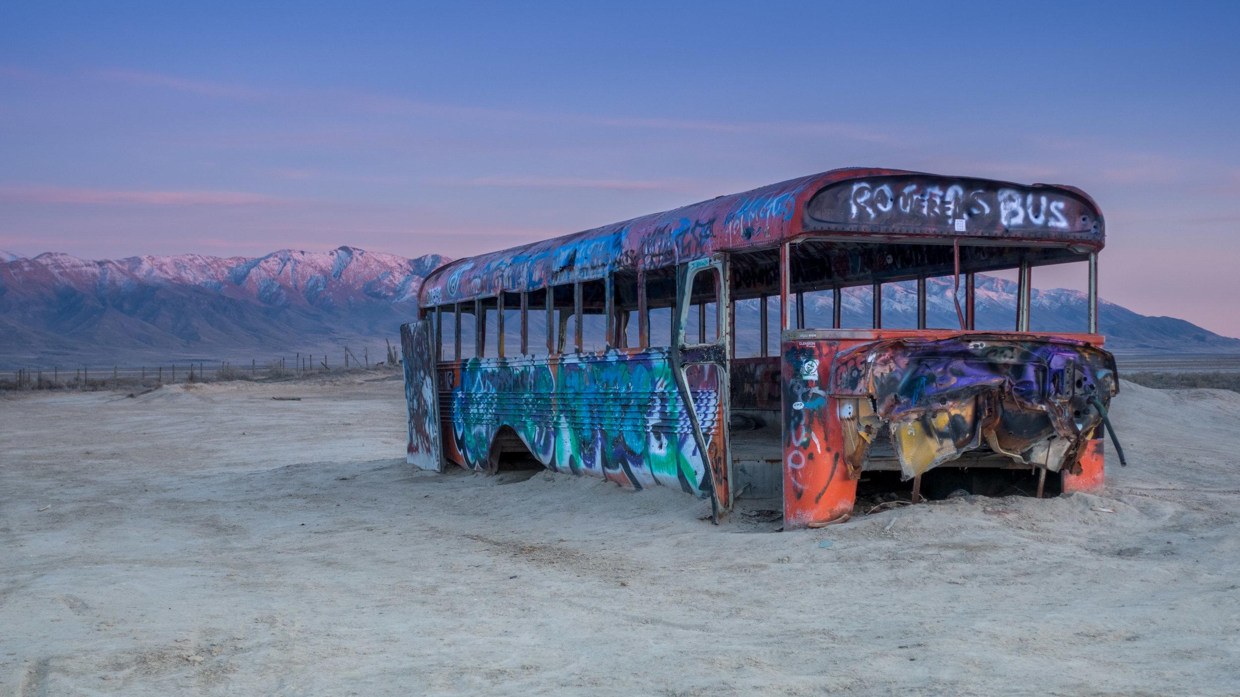 Delle Bus.jpg