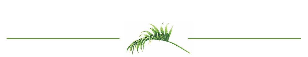 leaf divider 1.jpg