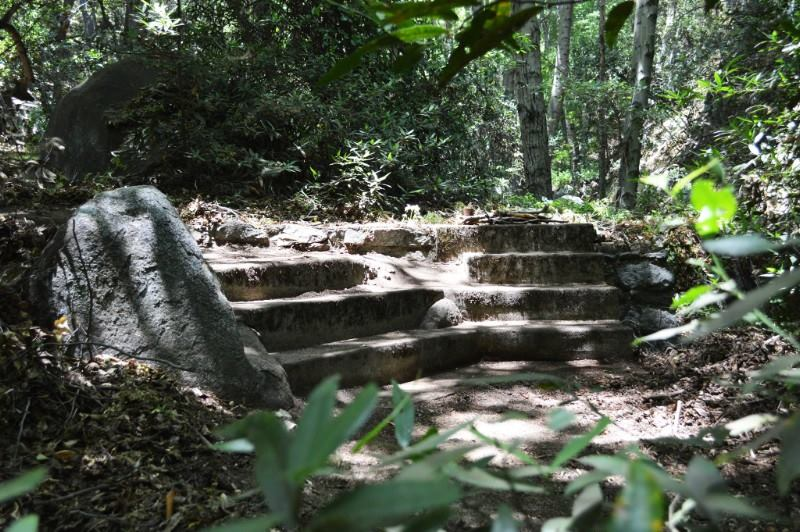 A mountain house foundation, Big Santa Anita Canyon, San Gabriel Mountains, CA