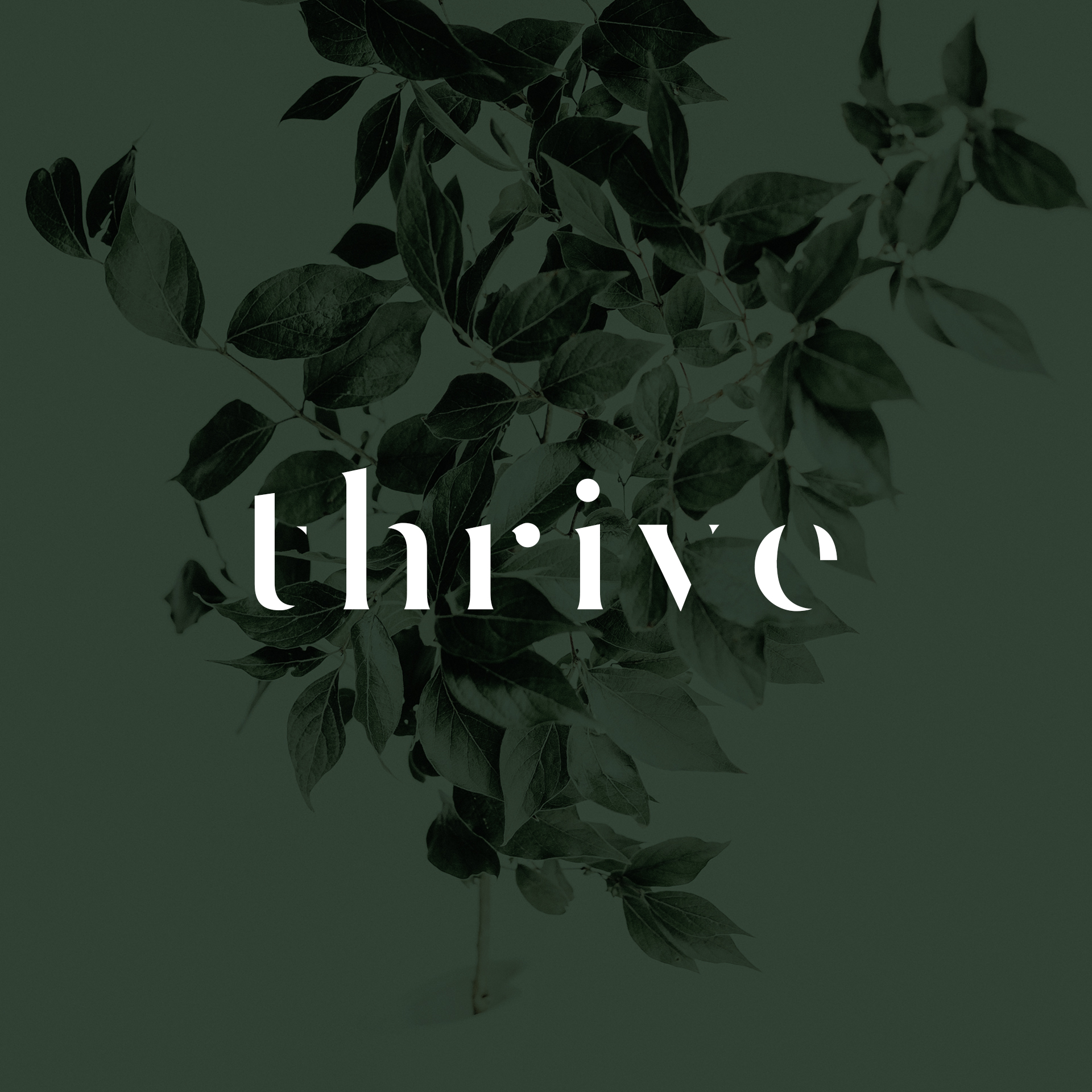 thriev bjc website logo 2.jpg