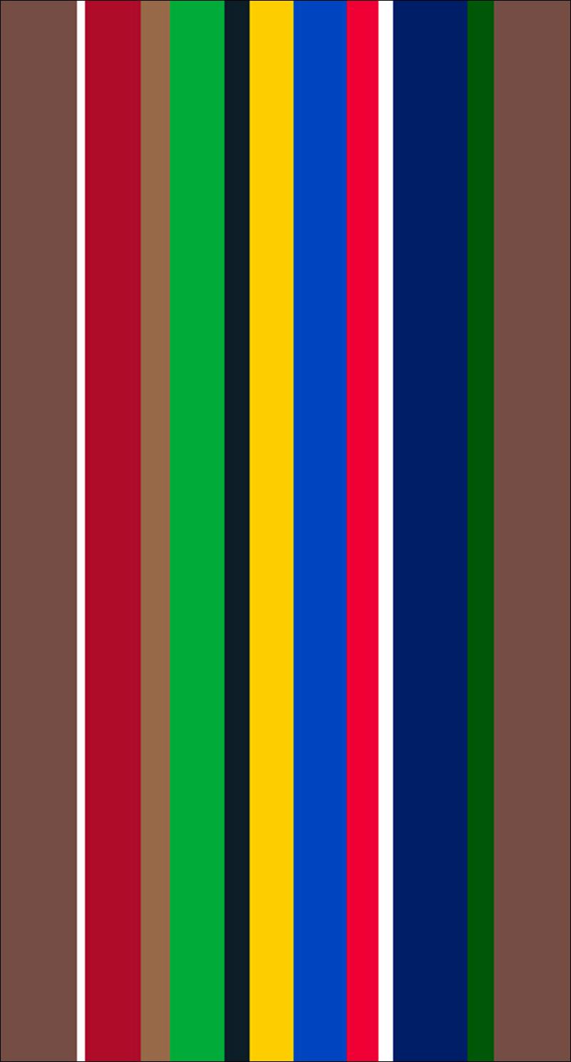 Flag_REVISION.jpg