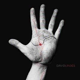 DavidLindesAlbum.jpg