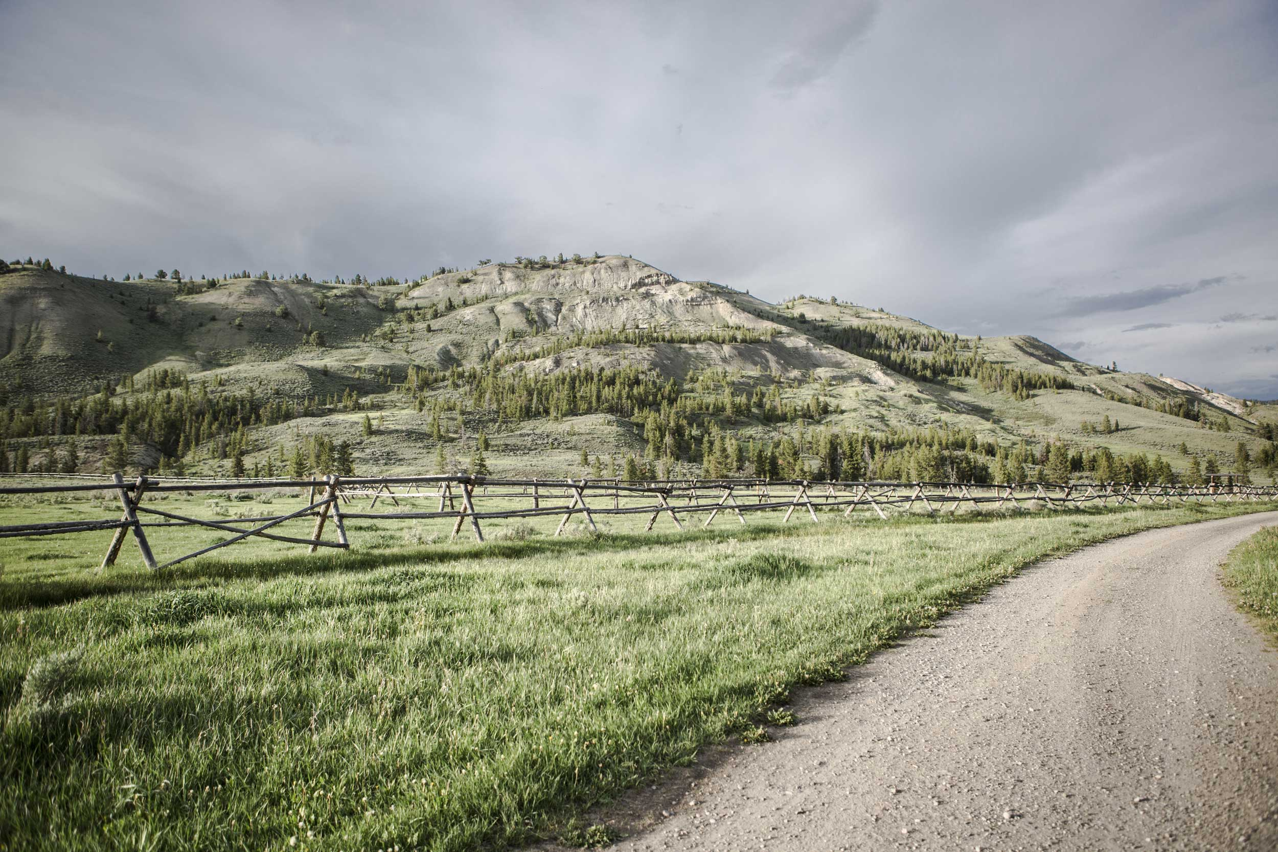 Beautiful scenery at Nine Quarter Circle Ranch fence and road in Montana.