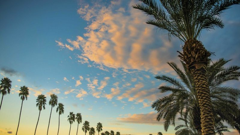 Palm-Springs-with-Kids-View-Photo-Courtesy-of-Greater-Palm-Springs-CVB-800x450.jpg